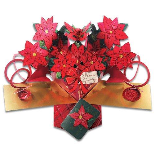 POINSETTIAS - Christmas Card