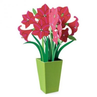 Amaryllis 3-D Holiday Card